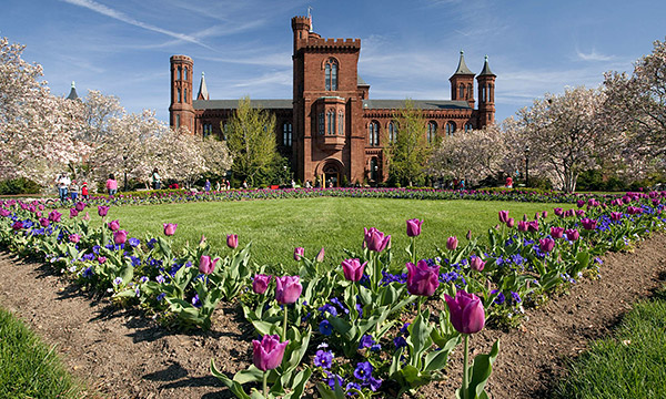 Smithsonian Institution Fellowship Program