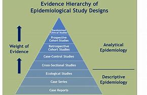 Epidemiologist -Job -Description – What -Are -their -Duties
