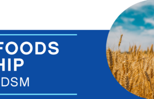 DSM: Improved Foods Scholarship